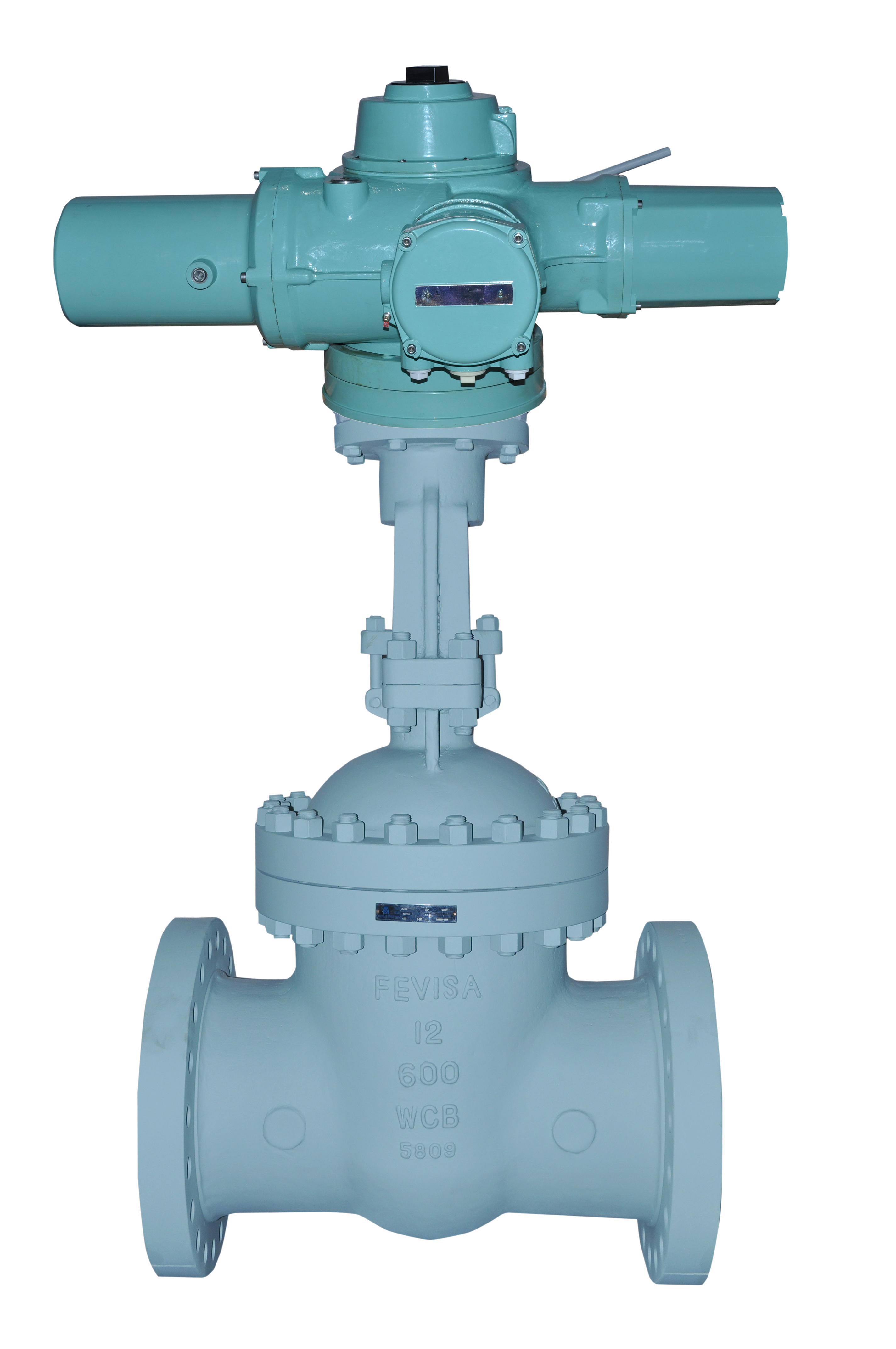 Motor Operated Gate Valves (MOVs)